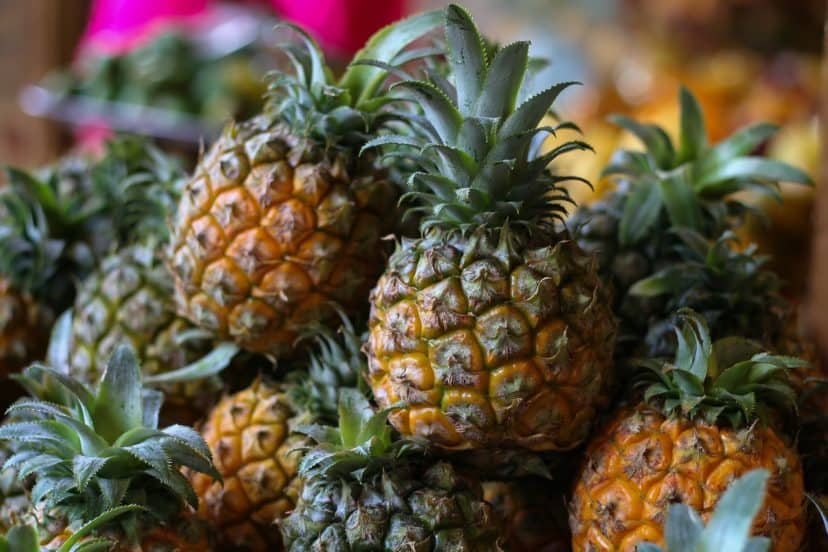 Pineapples In Aquaponics Gardens