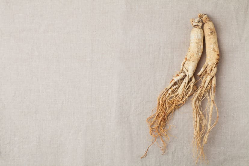 Growing Ginseng In Aquaponics Gardens