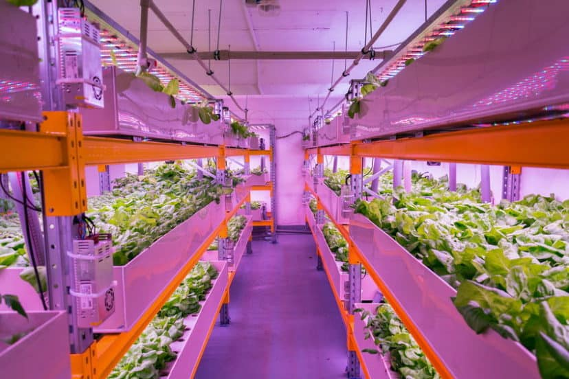 Is Aquaponics Bad For The Environment?