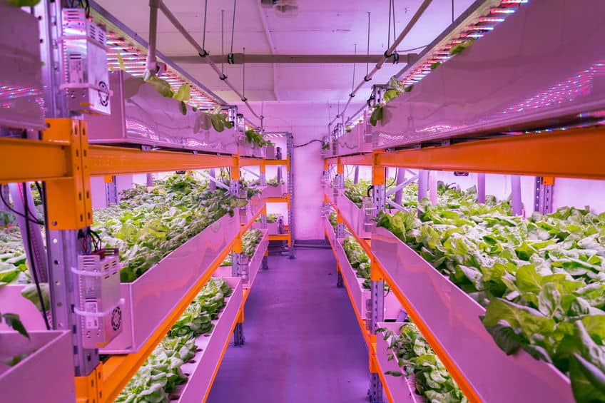 What is a Commercial Aquaponics System?