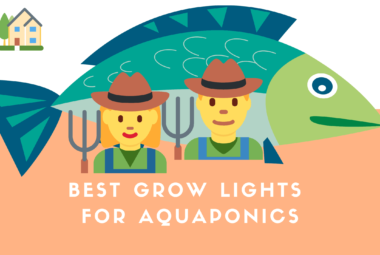 The Best Grow Lights For Aquaponics Systems